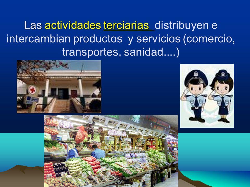 Las actividades terciarias distribuyen e intercambian productos y servicios (comercio, transportes, sanidad....)