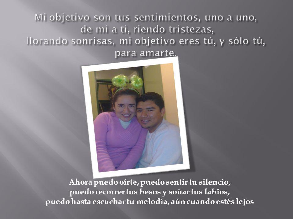 Mi objetivo son tus sentimientos, uno a uno, de mi a ti, riendo tristezas, llorando sonrisas, mi objetivo eres tú, y sólo tú, para amarte.