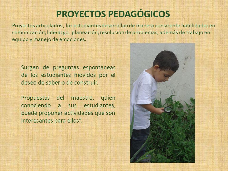 PROYECTOS PEDAGÓGICOS
