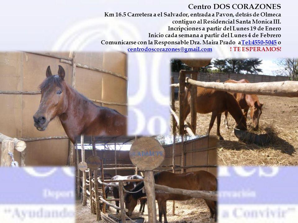 Centro DOS CORAZONES Km 16