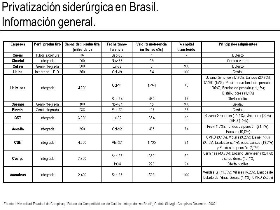 Privatización siderúrgica en Brasil. Información general.