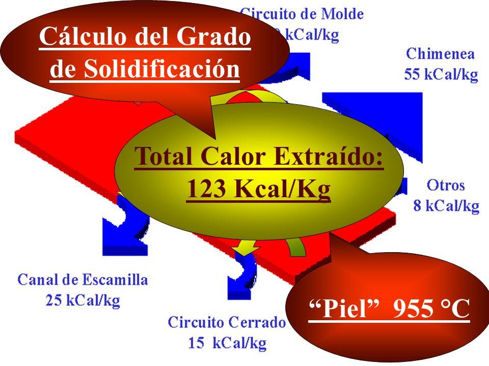 Cálculo del Grado de Solidificación Total Calor Extraído: 123 Kcal/Kg