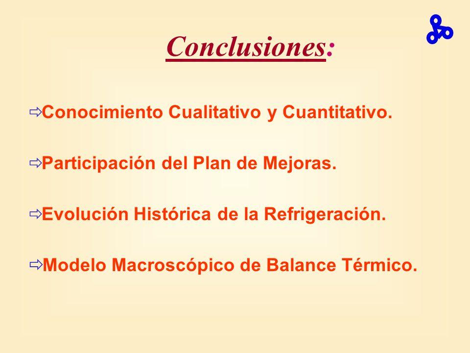 Conclusiones: Modelo Macroscópico de Balance Térmico.