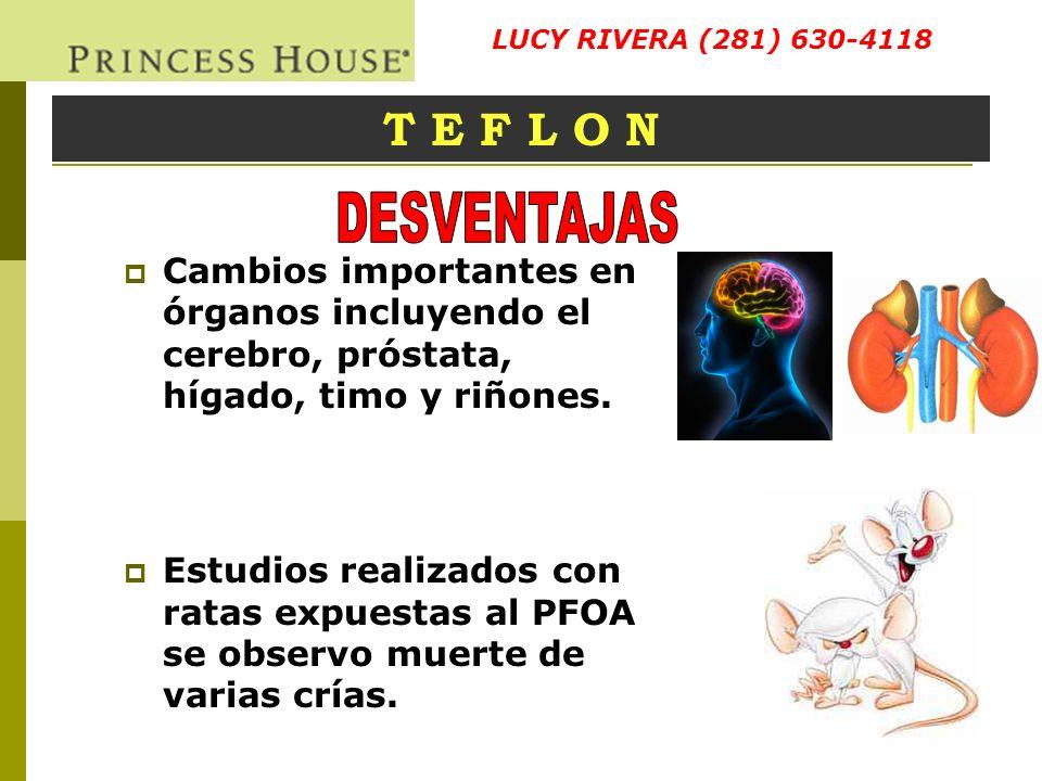 LUCY RIVERA (281) 630-4118 T E F L O N. DESVENTAJAS. Cambios importantes en órganos incluyendo el cerebro, próstata, hígado, timo y riñones.