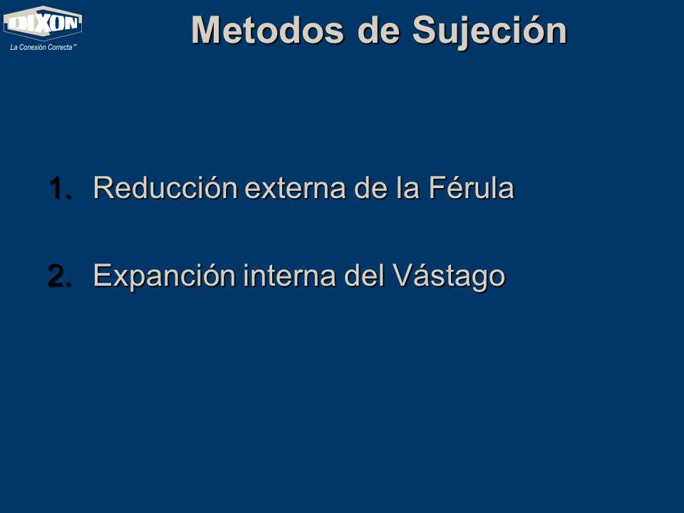 Metodos de Sujeción Reducción externa de la Férula