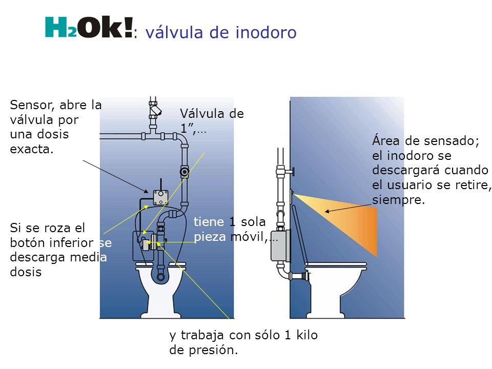 : válvula de inodoro Sensor, abre la válvula por una dosis exacta.