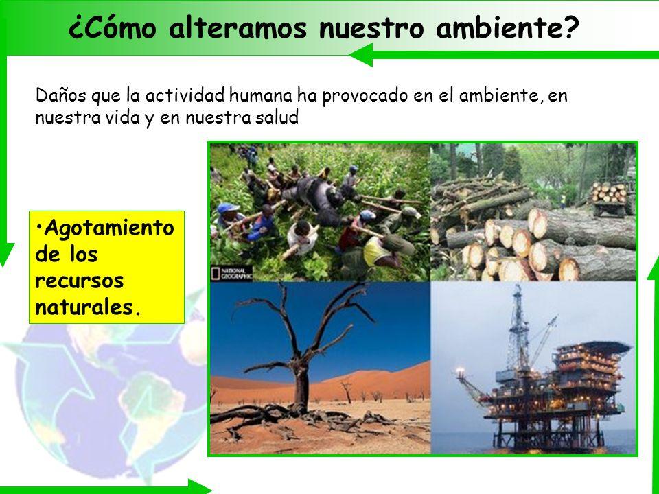 ¿Cómo alteramos nuestro ambiente
