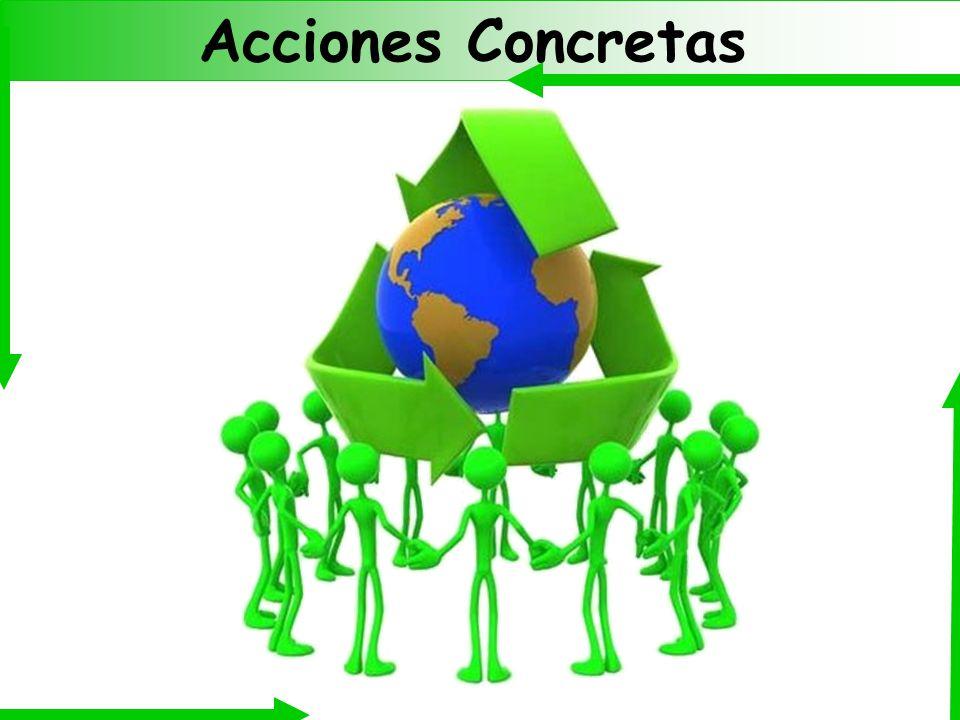 Acciones Concretas