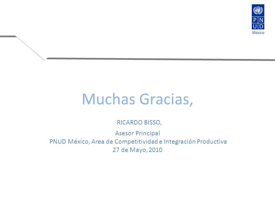 Muchas Gracias, RICARDO BISSO, Asesor Principal PNUD México, Area de Competitividad e Integración Productiva 27 de Mayo, 2010