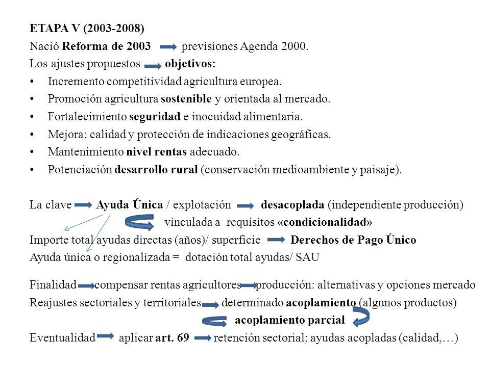 ETAPA V (2003-2008) Nació Reforma de 2003 previsiones Agenda 2000. Los ajustes propuestos objetivos: