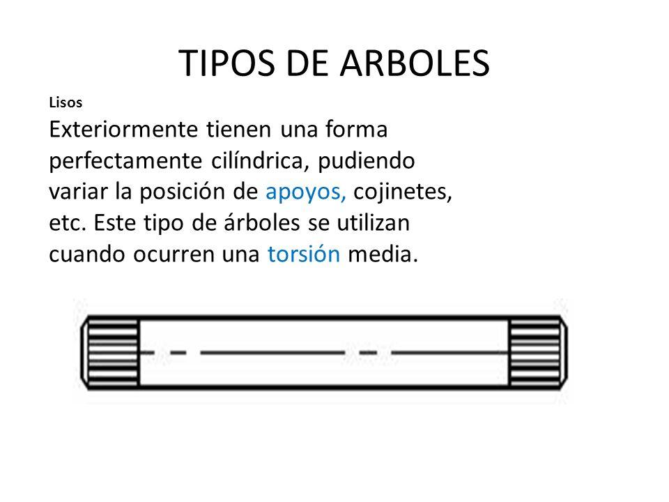 TIPOS DE ARBOLES Lisos.