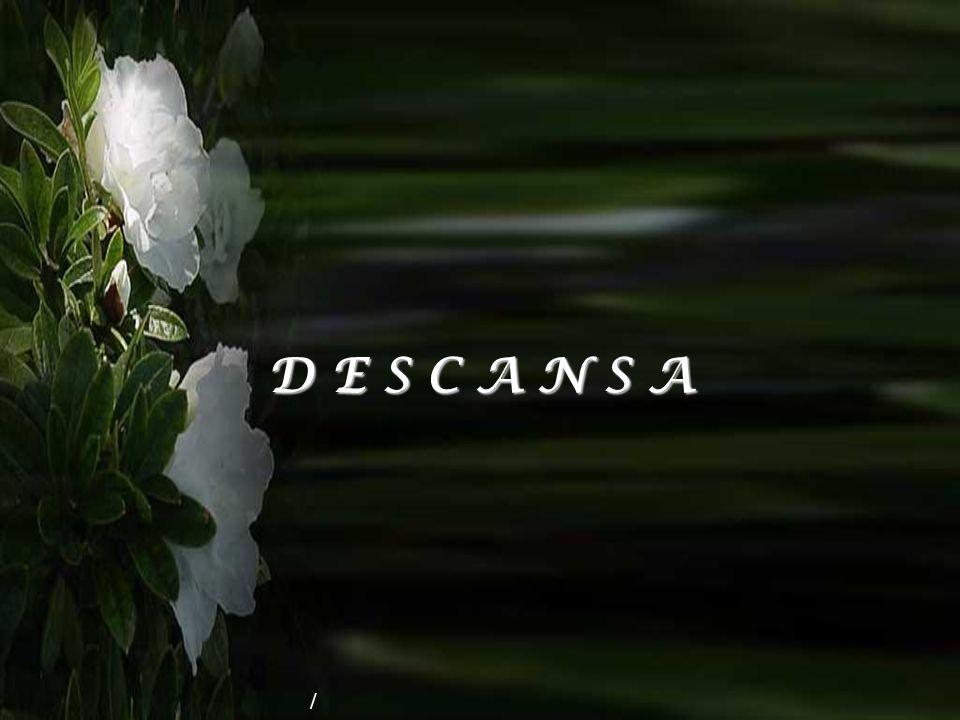 D E S C A N S A /