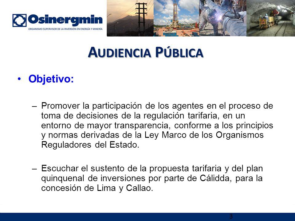 Audiencia Pública Objetivo: