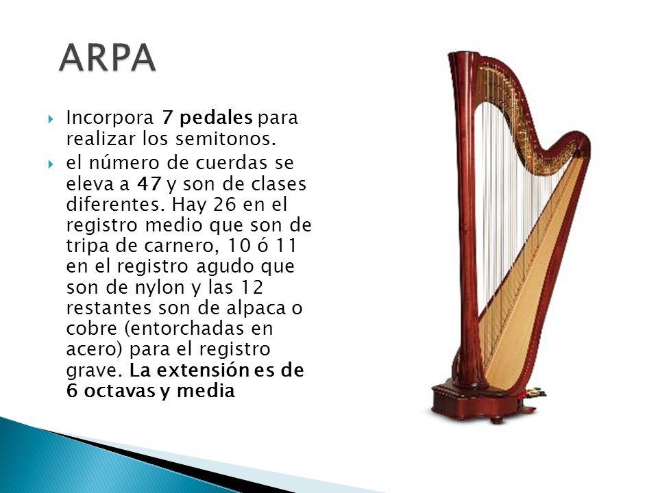 ARPA Incorpora 7 pedales para realizar los semitonos.