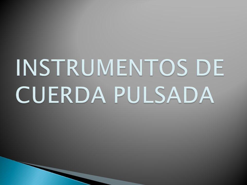 INSTRUMENTOS DE CUERDA PULSADA