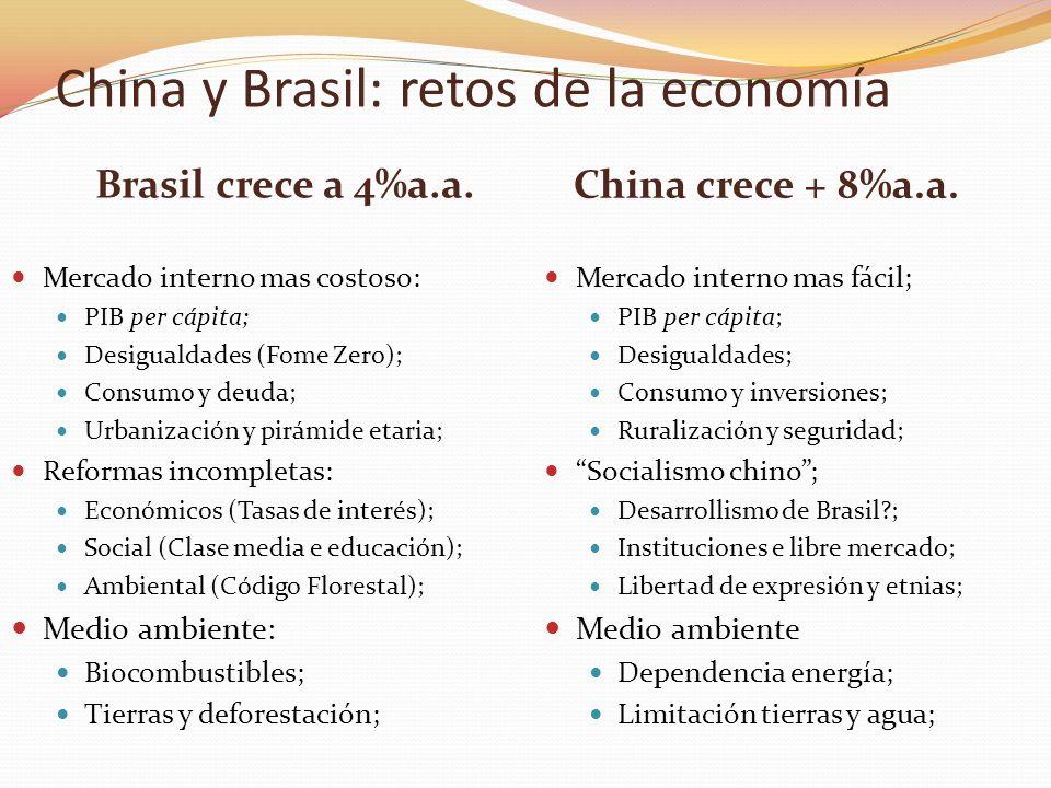China y Brasil: retos de la economía