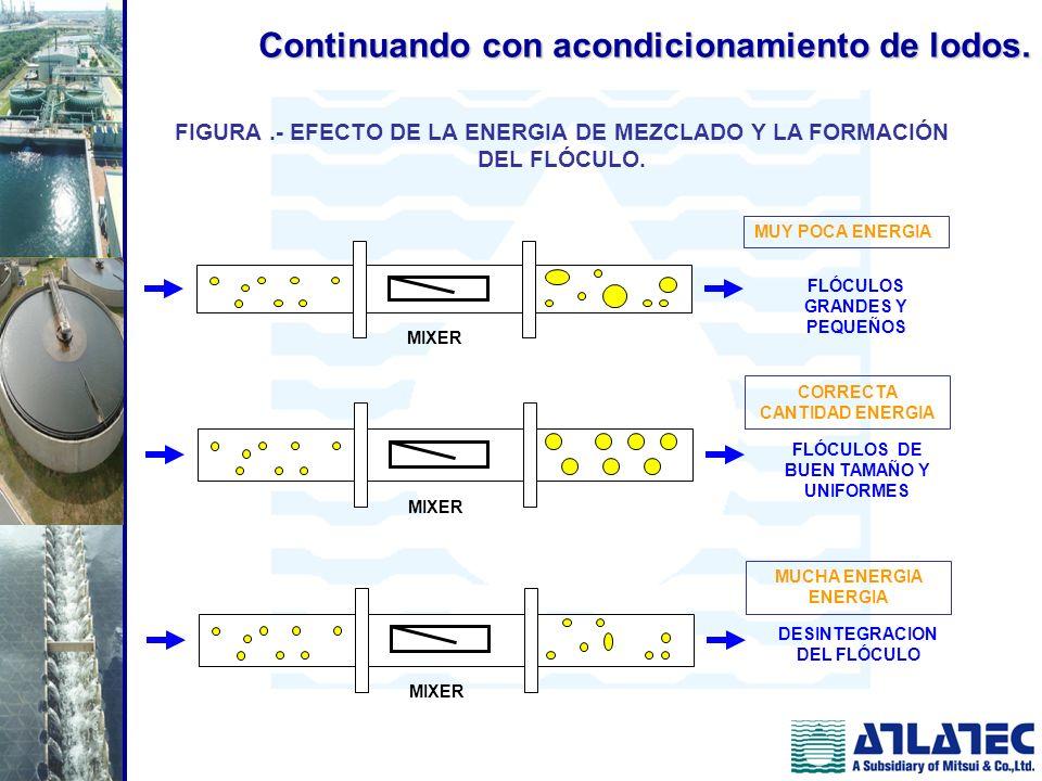 FIGURA .- EFECTO DE LA ENERGIA DE MEZCLADO Y LA FORMACIÓN DEL FLÓCULO.
