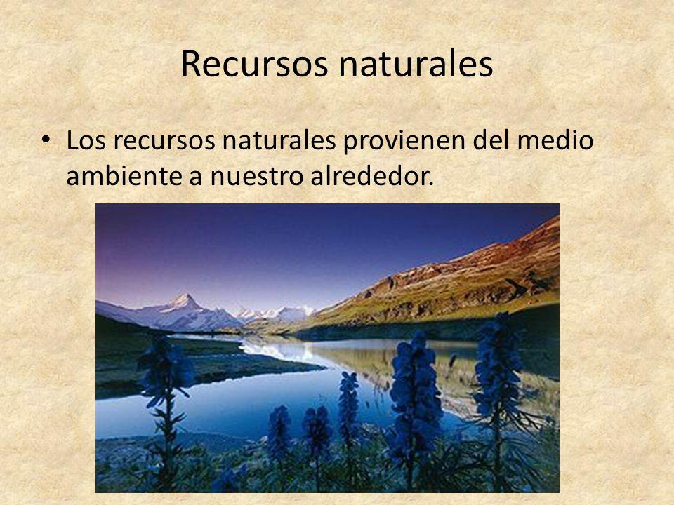 Recursos naturales Los recursos naturales provienen del medio ambiente a nuestro alrededor.