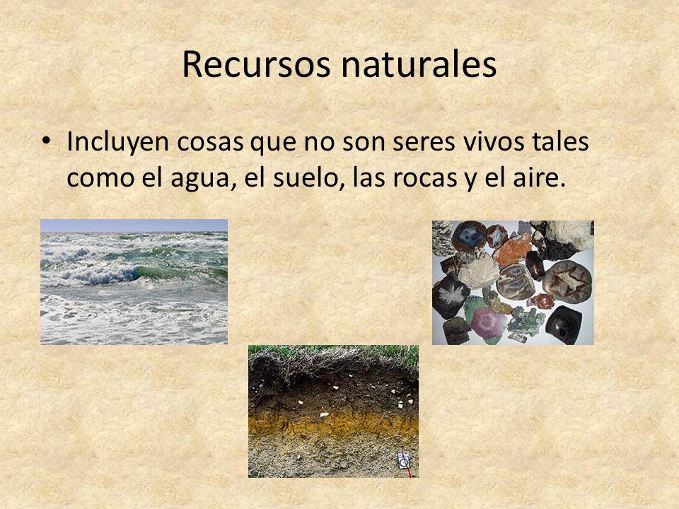 Recursos naturales Incluyen cosas que no son seres vivos tales como el agua, el suelo, las rocas y el aire.