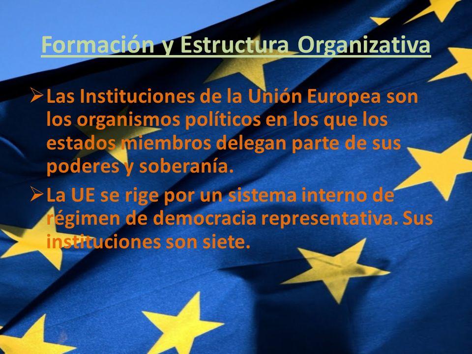 Formación y Estructura Organizativa