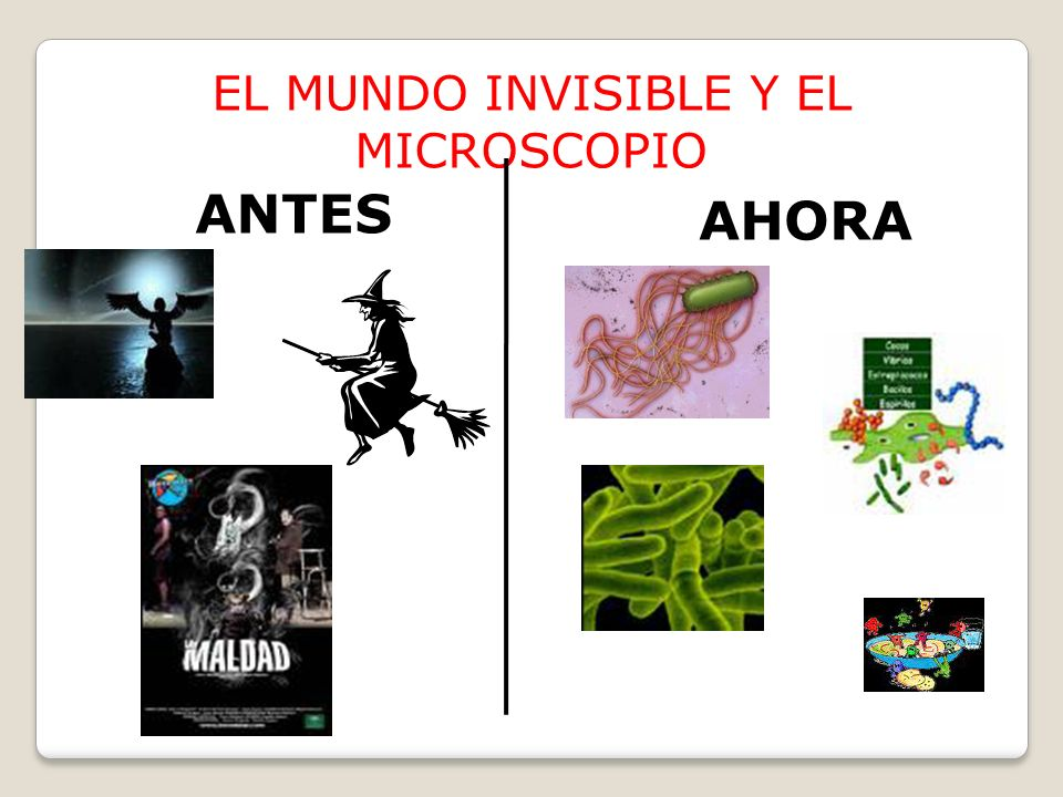 EL MUNDO INVISIBLE Y EL MICROSCOPIO