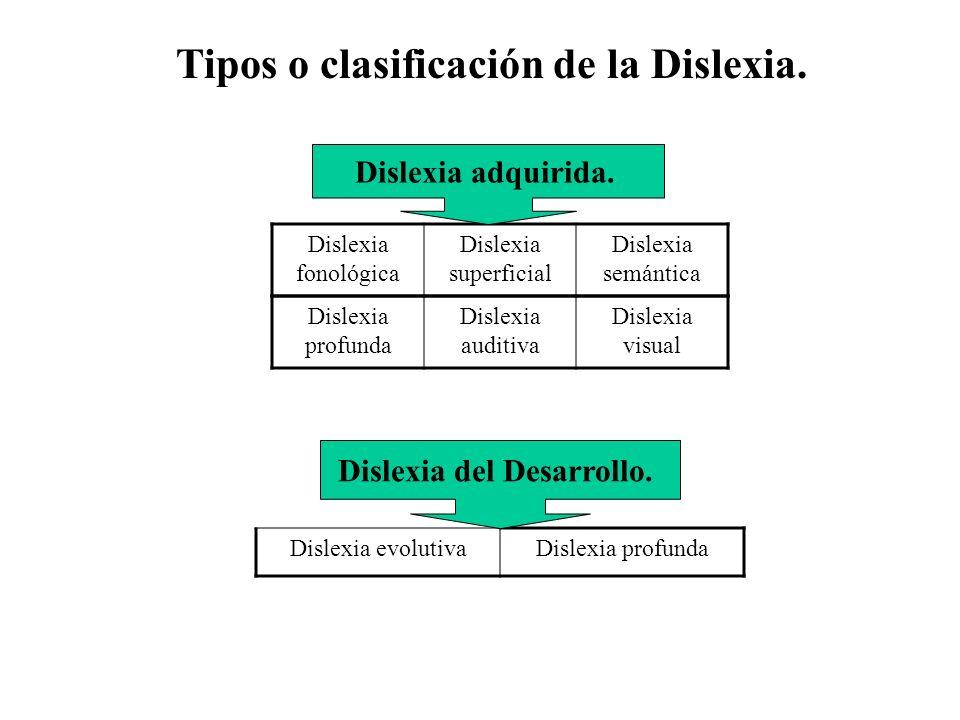 Tipos o clasificación de la Dislexia.