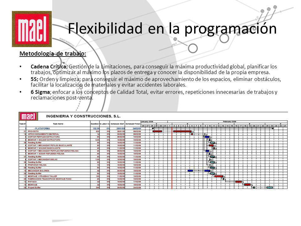Flexibilidad en la programación