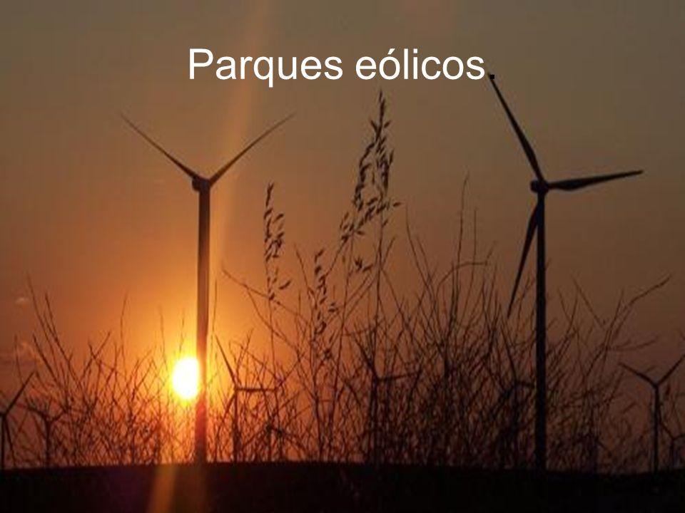 Parques eólicos.