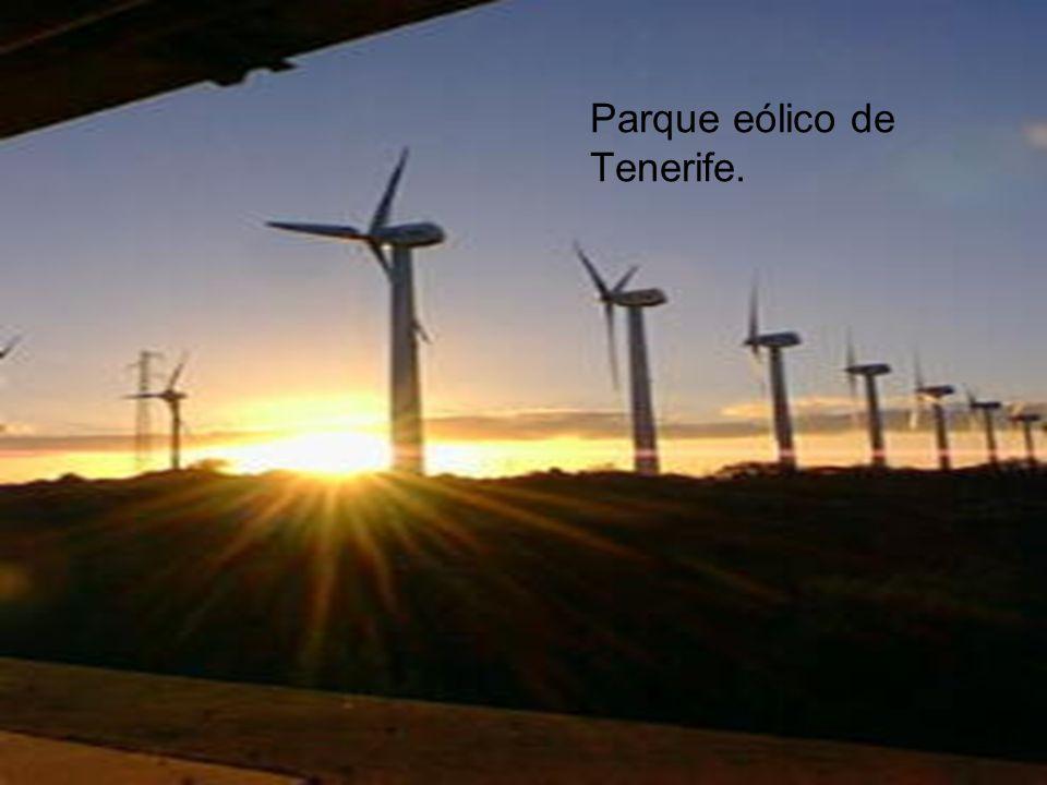 Parque eólico de Tenerife.