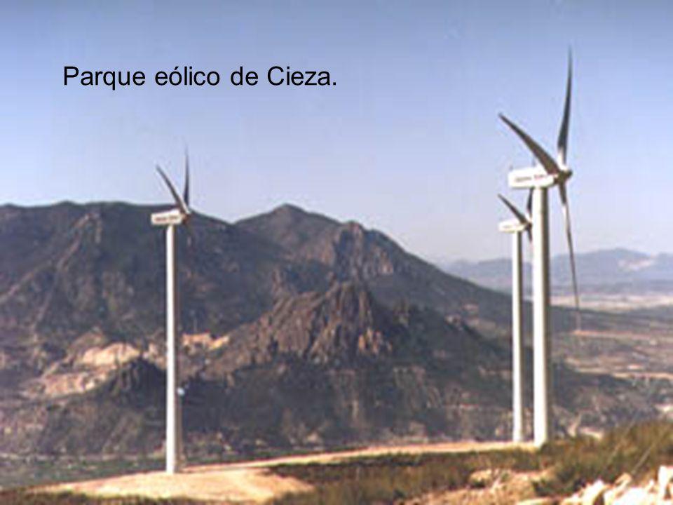 Parque eólico de Cieza.