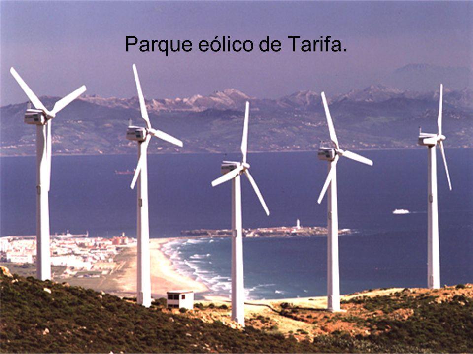 Parque eólico de Tarifa.