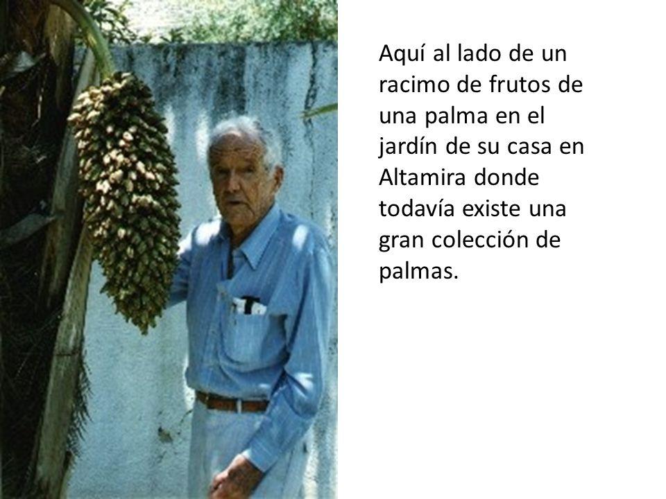 Aquí al lado de un racimo de frutos de una palma en el jardín de su casa en Altamira donde todavía existe una gran colección de palmas.