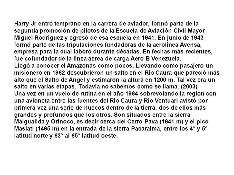 Harry Jr entró temprano en la carrera de aviador, formó parte de la segunda promoción de pilotos de la Escuela de Aviación Civil Mayor Miguel Rodríguez y egresó de esa escuela en 1941. En junio de 1943 formó parte de las tripulaciones fundadoras de la aerolínea Avensa, empresa para la cual laboró durante décadas. En fechas más recientes, fue cofundador de la línea aérea de carga Aero B Venezuela.