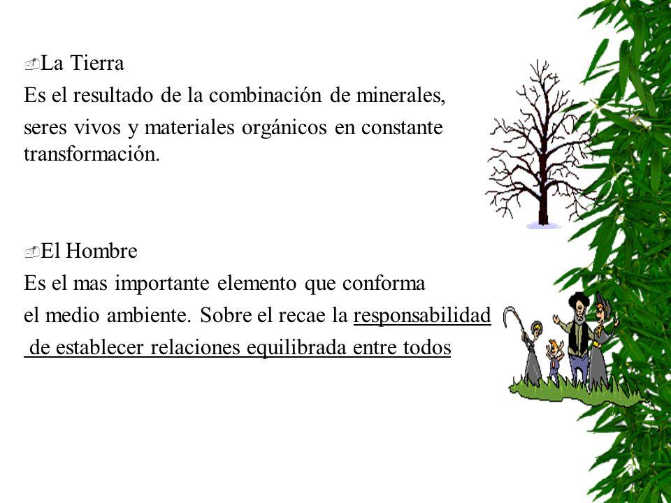 La Tierra Es el resultado de la combinación de minerales, seres vivos y materiales orgánicos en constante transformación.