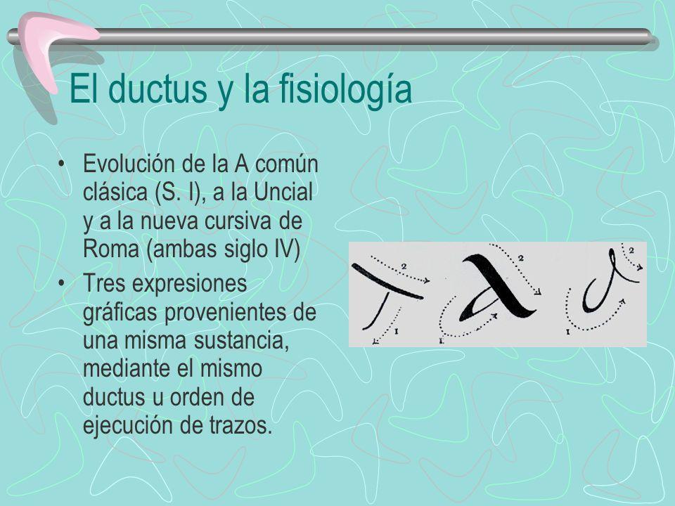 El ductus y la fisiología