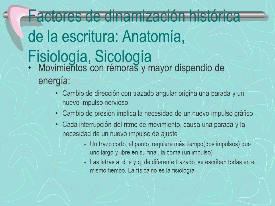 Factores de dinamización histórica de la escritura: Anatomía, Fisiología, Sicología