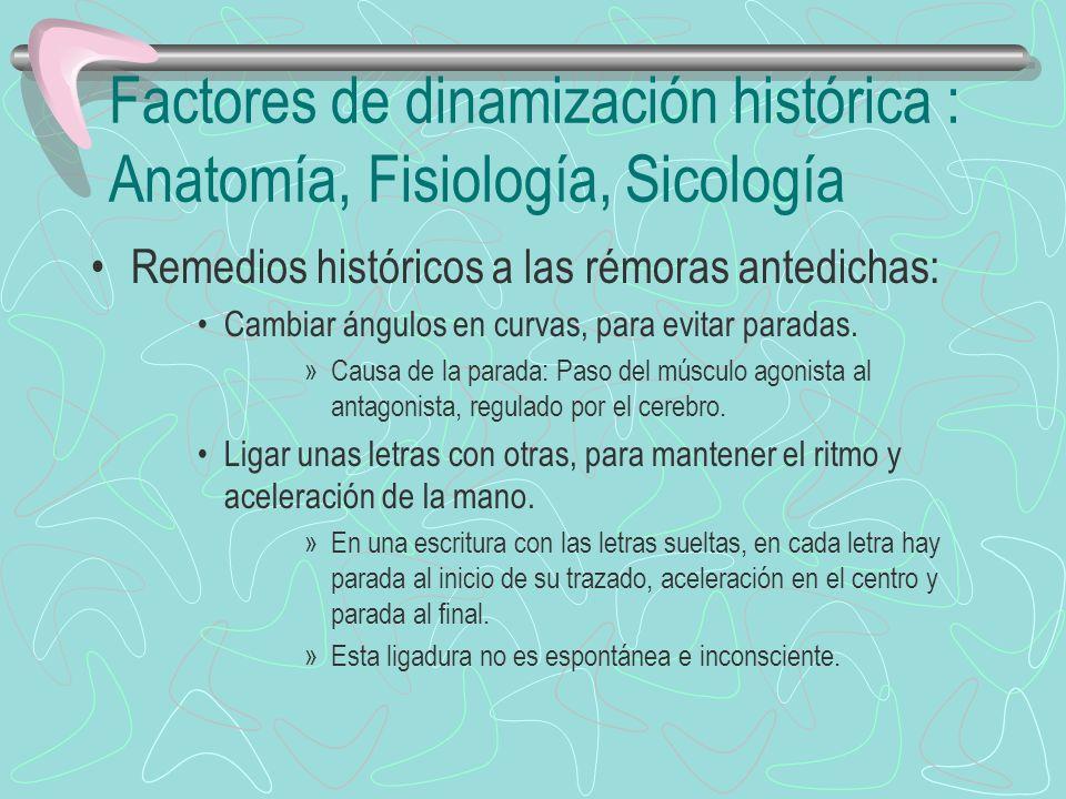 Factores de dinamización histórica : Anatomía, Fisiología, Sicología