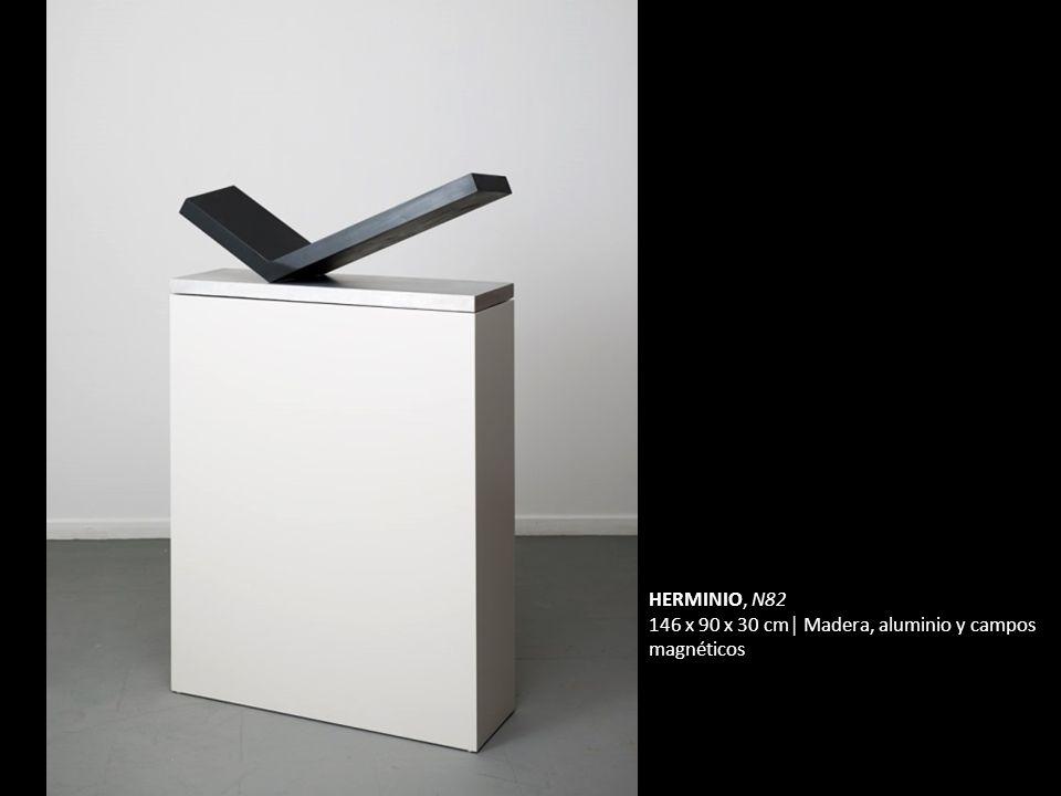 HERMINIO, N82 146 x 90 x 30 cm│ Madera, aluminio y campos magnéticos