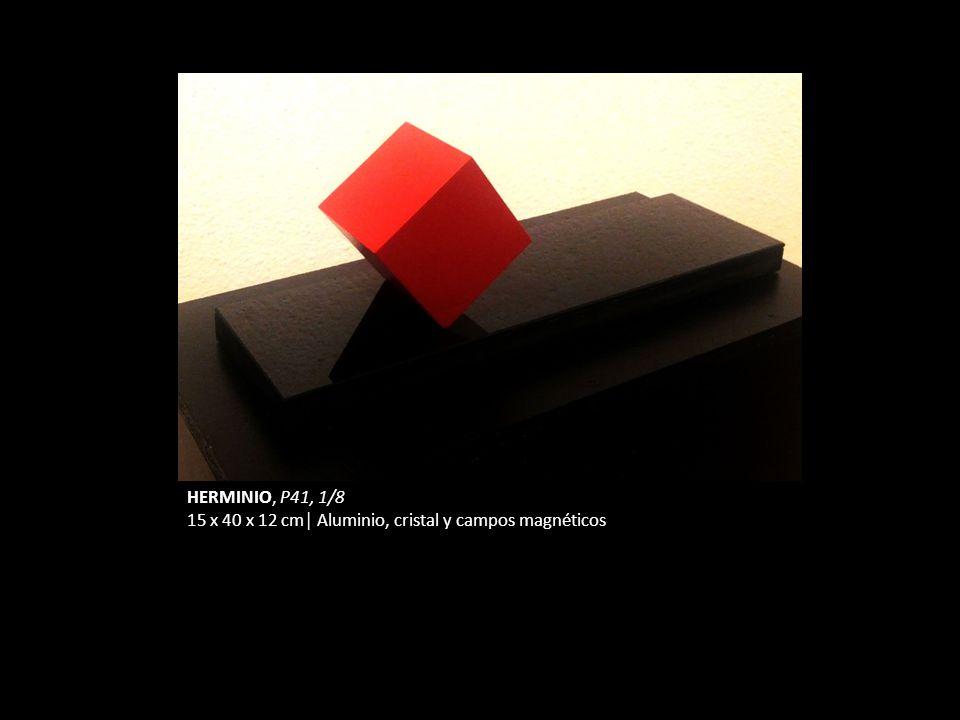 HERMINIO, P41, 1/8 15 x 40 x 12 cm│ Aluminio, cristal y campos magnéticos