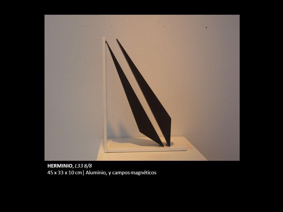 HERMINIO, L33 8/8 45 x 33 x 10 cm│ Aluminio, y campos magnéticos
