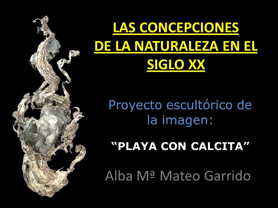 LAS CONCEPCIONES DE LA NATURALEZA EN EL SIGLO XX