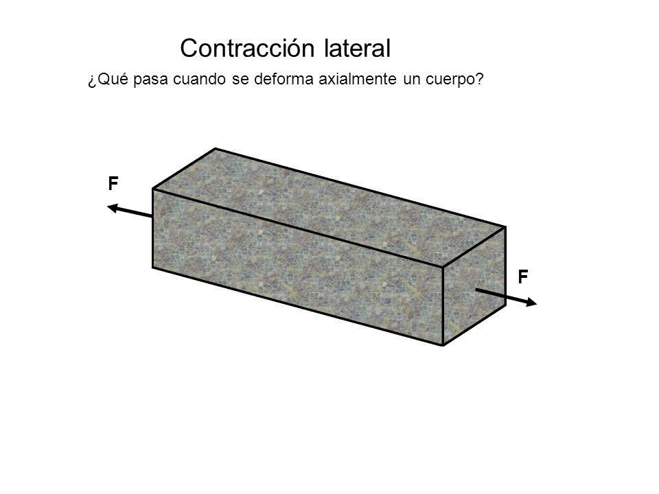 Contracción lateral F F