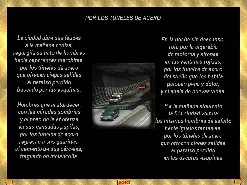 POR LOS TÚNELES DE ACERO