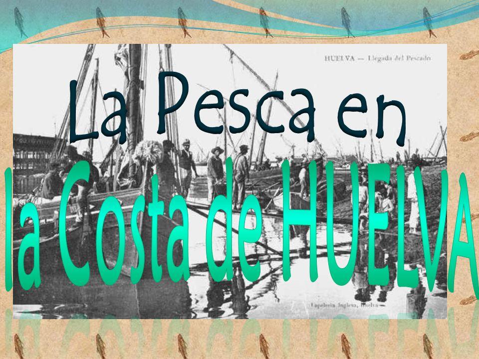 La Pesca en la Costa de HUELVA