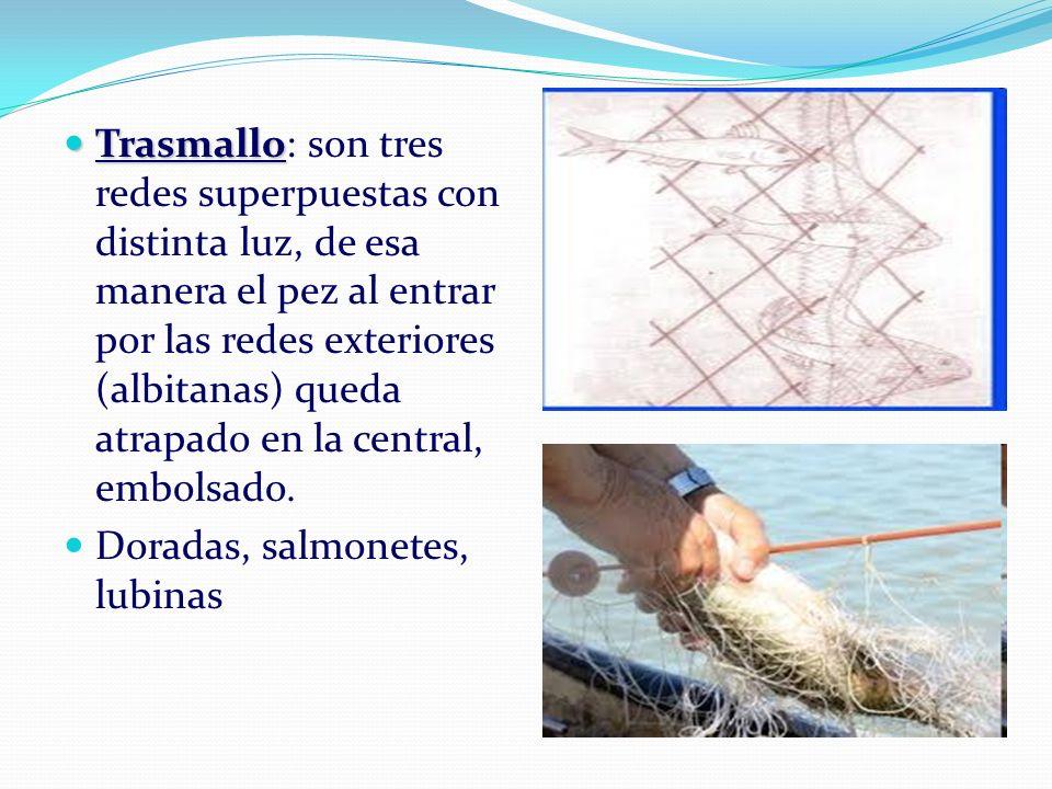 Trasmallo: son tres redes superpuestas con distinta luz, de esa manera el pez al entrar por las redes exteriores (albitanas) queda atrapado en la central, embolsado.