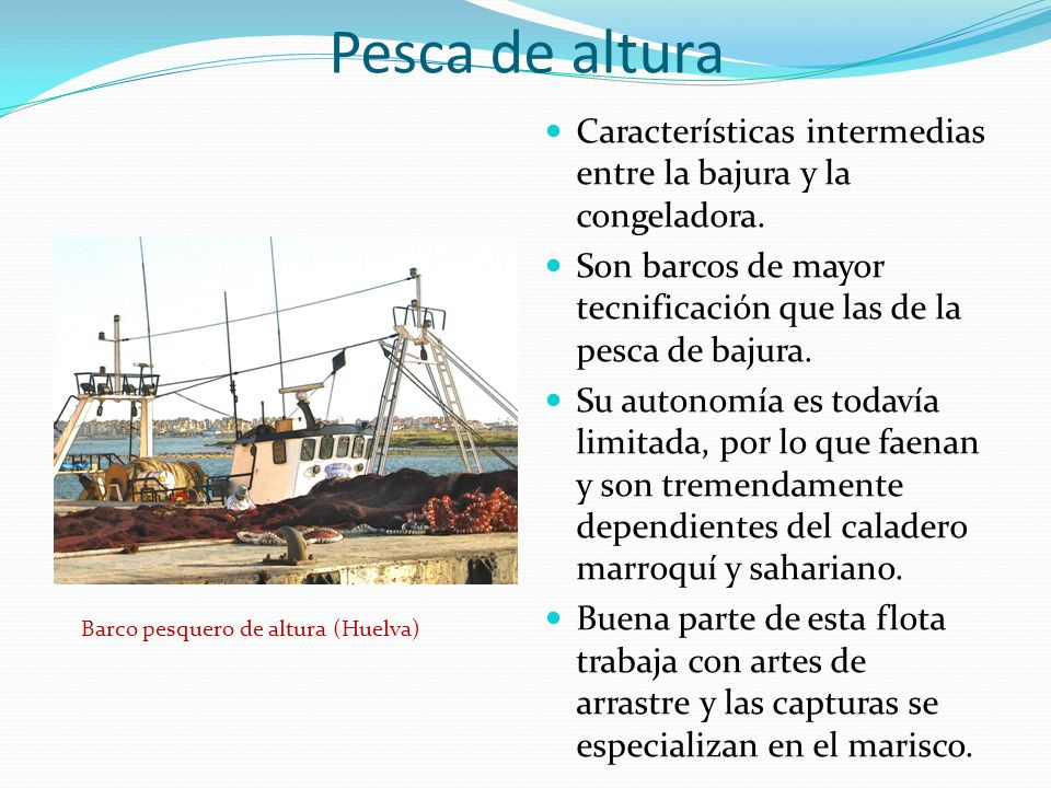 Pesca de altura Características intermedias entre la bajura y la congeladora. Son barcos de mayor tecnificación que las de la pesca de bajura.