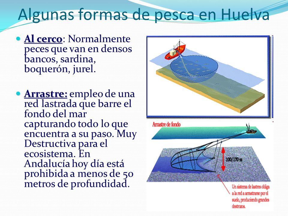 Algunas formas de pesca en Huelva