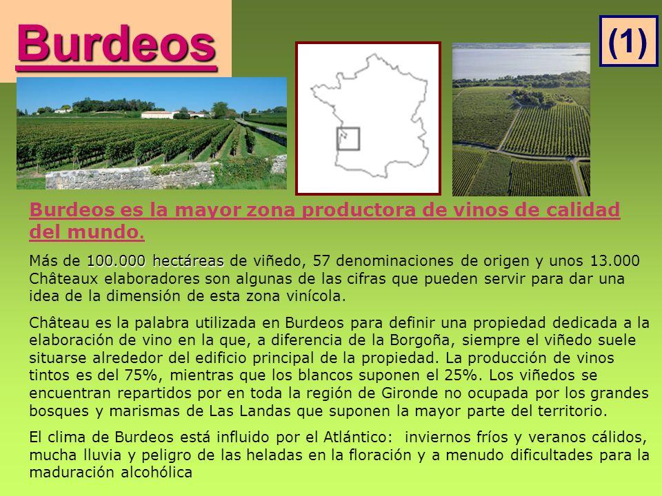 Burdeos (1) Burdeos es la mayor zona productora de vinos de calidad del mundo.