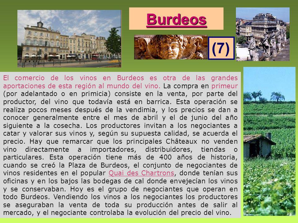 Burdeos (7)