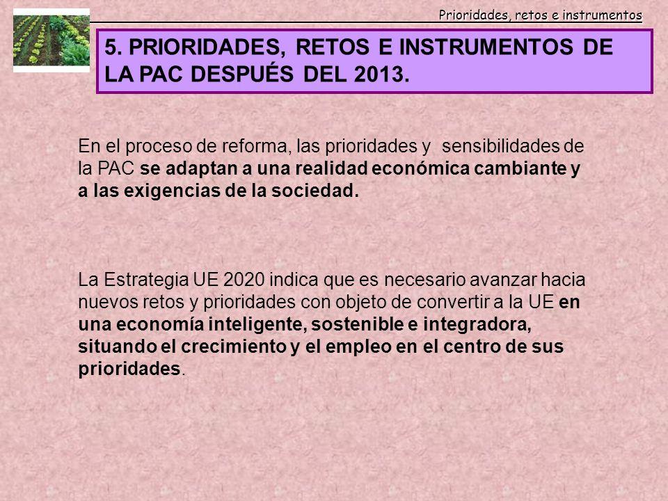 5. PRIORIDADES, RETOS E INSTRUMENTOS DE LA PAC DESPUÉS DEL 2013.